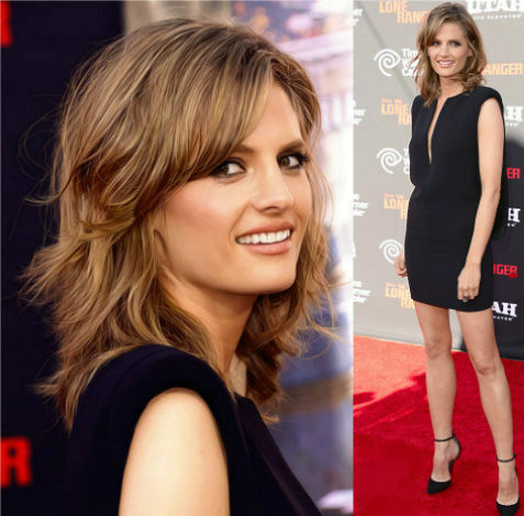 Stana Katic Short Hairstyles Awesome Medium Wavy Casual Hairstyle Brunette