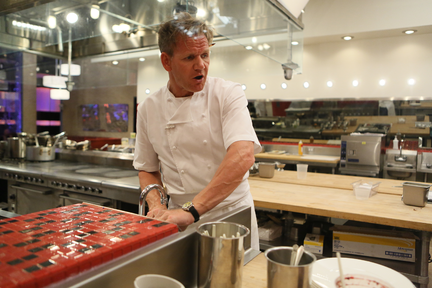 Hell's Kitchen 2014 Season 13 Results: Who Went Home In Week 12?