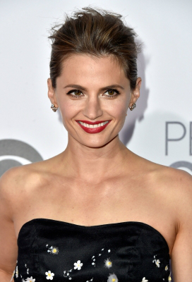 Stana Katic on the Red Carpet at 2015 People's Choice Awards