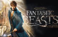 Fantastic Beasts and Where to Find Them Will Be Extended to Five Movies