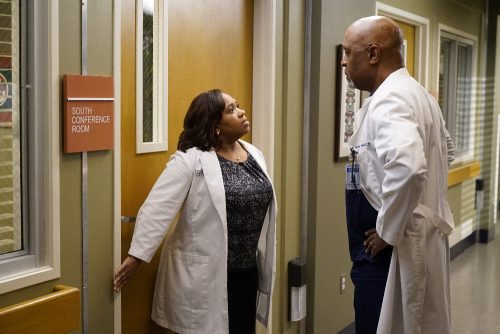 Grey's Anatomy Season 13 Spoilers - Episode 7 Recap - Why Try to Change Me Now