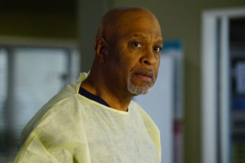 Grey's Anatomy Season 13 Spoilers - Winter Finale Sneak Peek