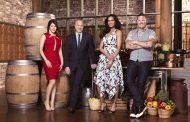 Top Chef Charleston 2016 Spoilers: Meet the Season 14 Chefs (PHOTOS)