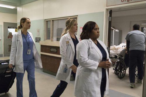Grey's Anatomy Season 13 Spoilers - Episode 10 Recap - You Can Look (But You'd Better Not Touch)