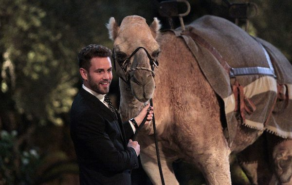 The Bachelor 2017 Spoilers: Who Goes Home Tonight? 1/23/2017