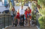 The Bachelor recap: Worst in Show