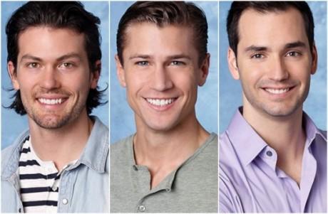The Bachelorette 2013 Spoilers: Who Should Win Season 9? (POLL)