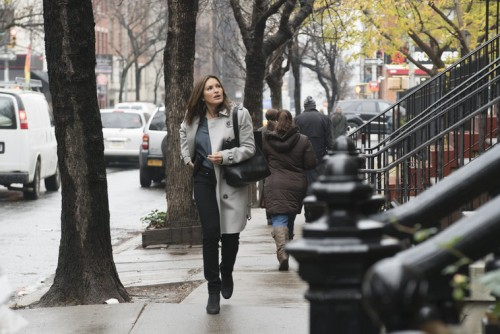 law and order svu townhouse incident