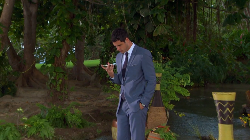 The Bachelor 2016 Spoilers: Sneak Peek At Bachelor Finale