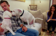 Married at First Sight Season 4 Recap: Episode 7 – Moving In!